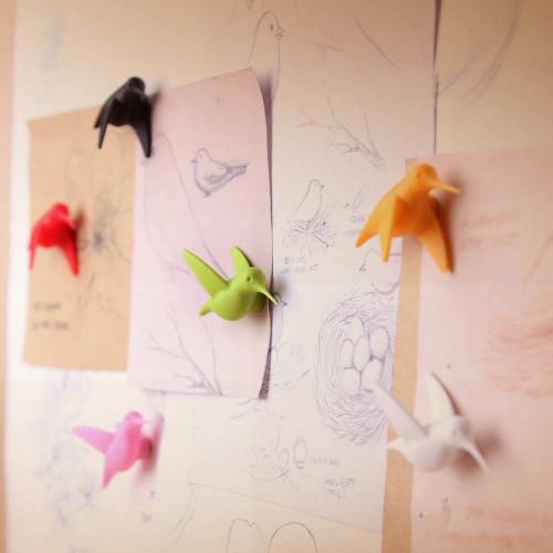 QUALY סט מגנטים מעוצבים למקרר - ציפורים