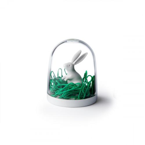 מעמד לאטבי נייר ארנב בשדה QUALY