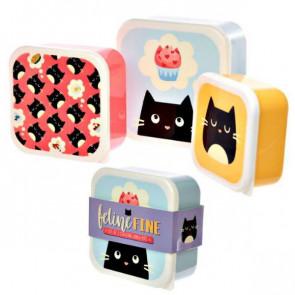 סט 3 קופסאות קומפקטיות - חתולים מתוקים